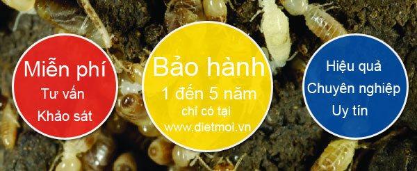 diet moi bao hanh