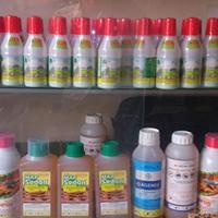 Ảnh:  Bảng giá thuốc diệt mối và thuốc diệt côn trùng