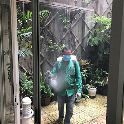 Phun thuốc diệt muỗi tại quận 2, kiểm soát dịch bệnh do muỗi gây ra